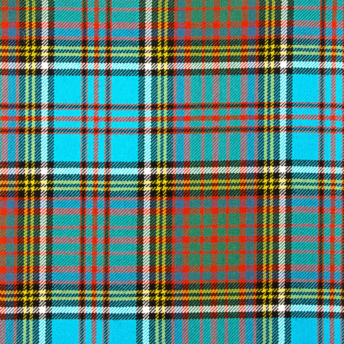 Anderson Ancient Heavy Weight Tartan Fabric-Front
