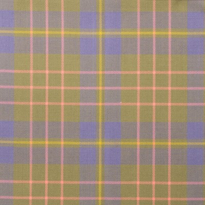 Cameron Hunting Ancient Light Weight Tartan Fabric-Front