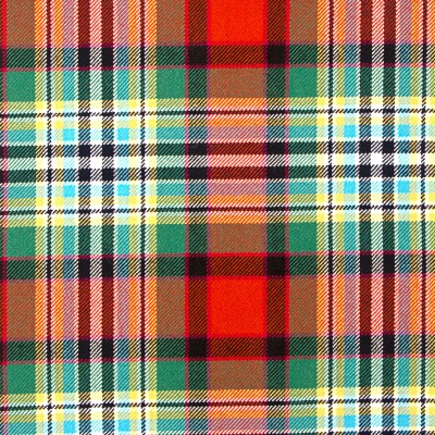 Dundee Old Ancient Heavy Weight Tartan Fabric-Front