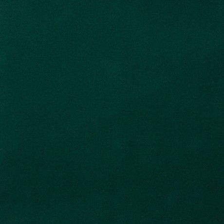 Green Modern Plain Coloured Light Weight Fabric
