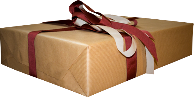 Mystery Christmas Present