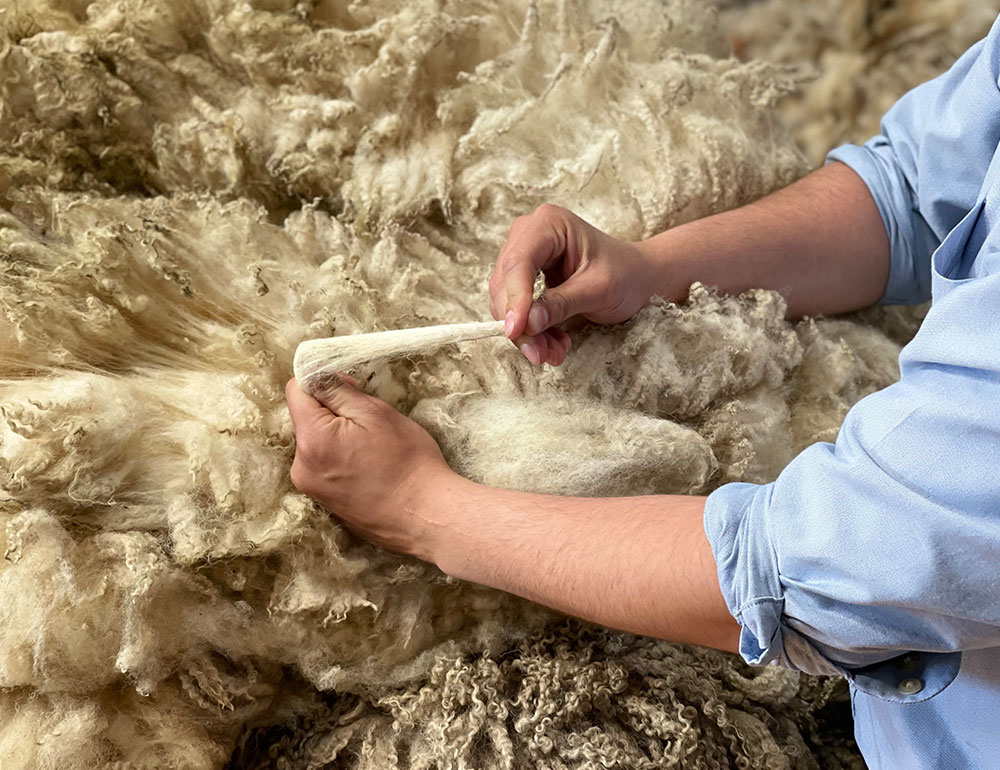 Wool Sorting centre in Galashiels